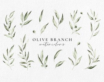 Olive Branch watercolor clip art, botanical leaves illustrations, olive wreath clipart
