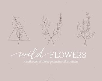 Wild Flowers illustrations, Bouquets wreaths & patterns, floral clipart bundle