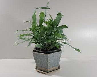 SECONDS Medium Hexagon Planter with Saucer - Sea Smoke Matte Glaze *Discounted 30% OFF*