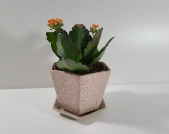 SECONDS Small Hexagon Planter with Saucer - Pink Granite Matte Glaze *Discounted 30% OFF*