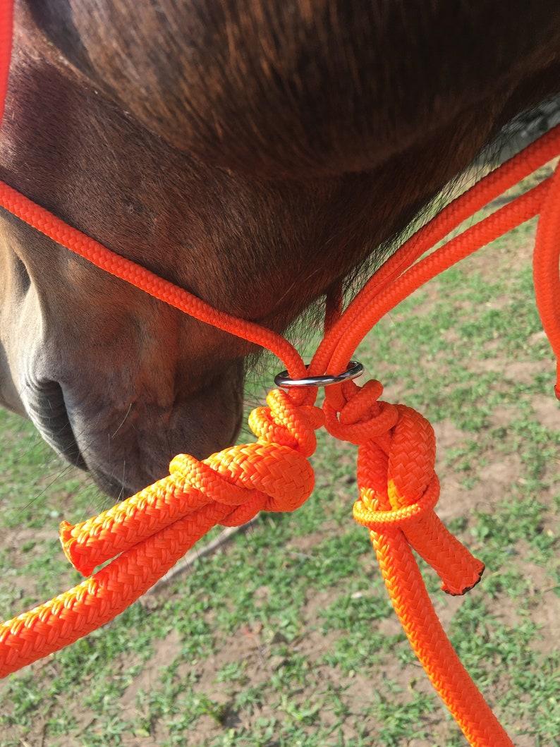 Riding Rope Halter Set