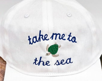 6baa02bbde4 Sea turtle hat