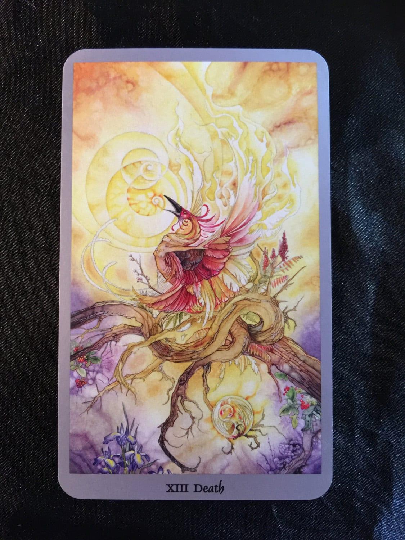 One Card Psychic Tarot Reading, Tarot, Divination, New Age