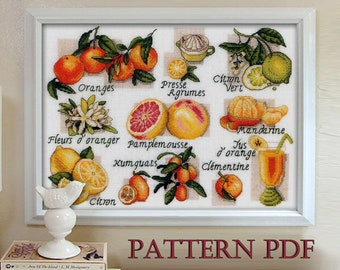 cross stitch pattern - Citrus fruit, Sampler, Les agrumes, counted cross stitch, embroidery Citrus, printable pdf