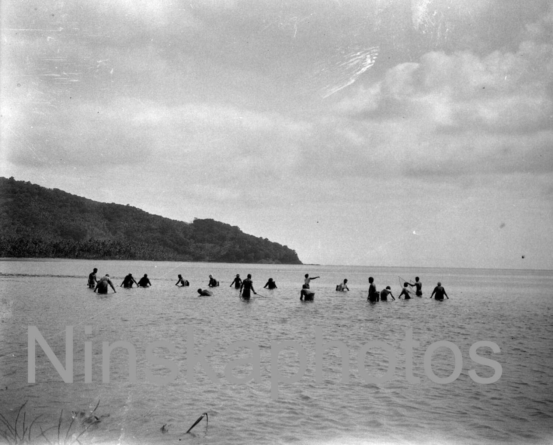 Hauling The Fishing Net In Apia Samoa 1920s Antique Photo Reprint