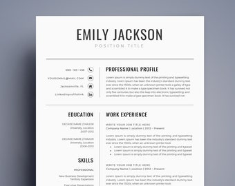 Resume Template CV For MS Word