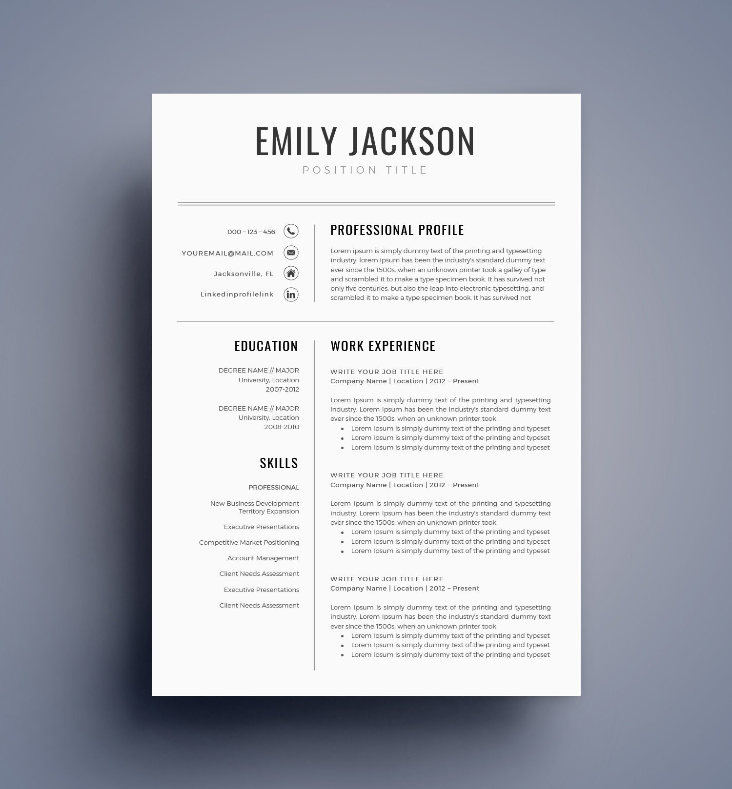 resume template    cv template for ms word best selling