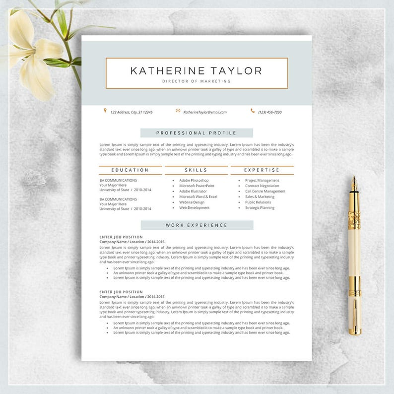 Professional Resume Template CV For MS Word