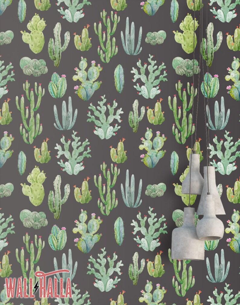 Fond Décran Cactus Aquarelle Transparente Temporaire Etsy