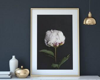 White flower print, peony print, white peony art, flower poster, flower photo, romantic gift for women, mother's day gifts, boho decor, art