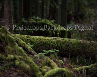 Digital Backdrop/Prop (Moss Covered Log in Old World Forest)