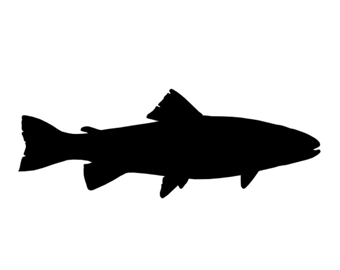 Pack of 3 Trout Stencils Made from 4 Ply Mat Board, 5x7, 4x6 and 3x5 -Package includes One of Each Size