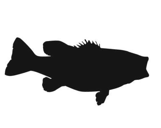 Pack of 3 Largemouth Bass Stencils Made from 4 Ply Mat Board, 5x7, 4x6 and 3x5 -Package includes One of Each Size