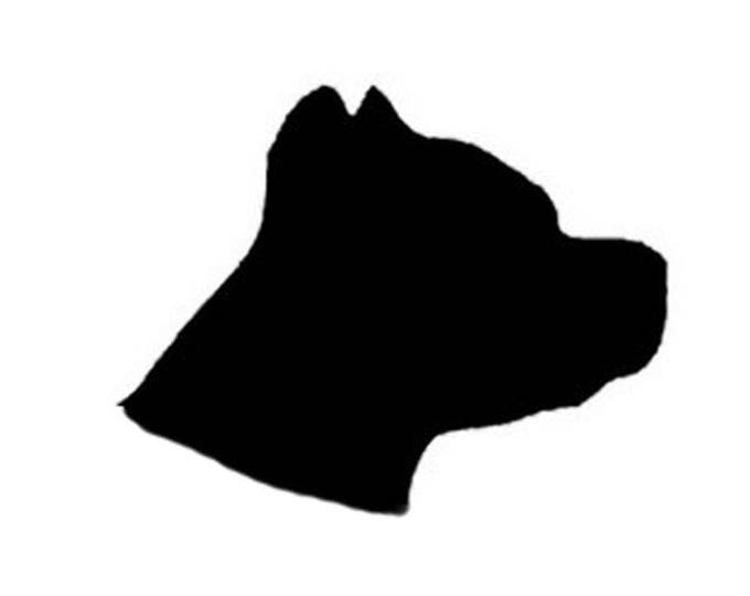 Pack of 3 Pitbull Head Only Stencils Made from 4 Ply Mat Board 16x20, 11x14, 8x10 -Package includes One of Each Size