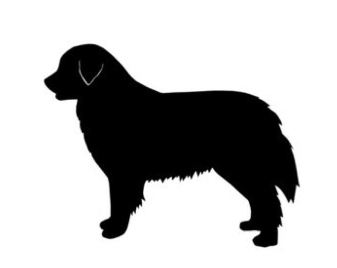 Burnese Mountain Dog Stencil Made from 4 Ply Mat Board-Choose a Size-From 5x7 to 24x36