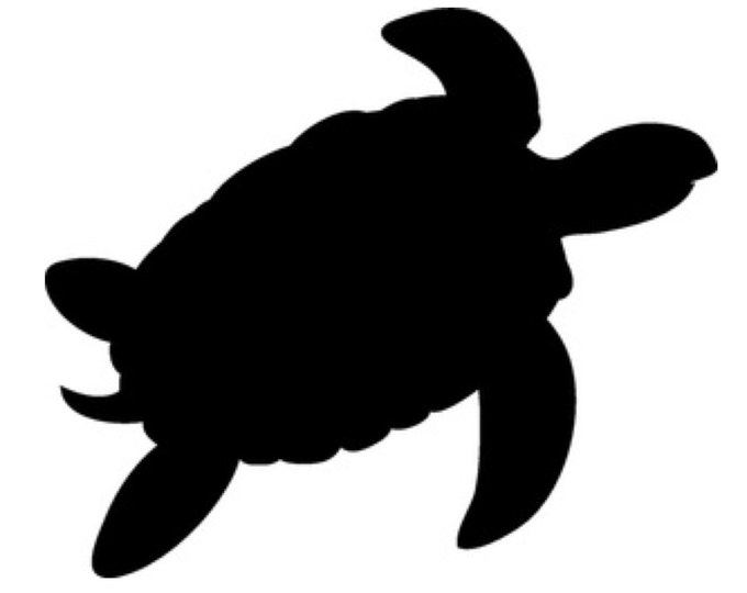 Pack of 3 Turtle Stencils Made from 4 Ply Mat Board, 11x14, 8x10 and 5x7 -Package includes One of Each Size