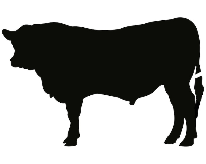Bull Stencil Made from 4 Ply Mat Board-Choose a Size-From 5x7 to 24x36