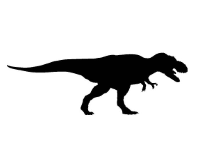 Pack of 3 Trex Tyranosaurus Stencils Made from 4 Ply Mat Board 16x20, 11x14, 8x10 -Package includes One of Each Size