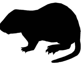 Pack of 3 Woodchuck Stencils Made from 4 Ply Mat Board, 11x14, 8x10 and 5x7 -Package includes One of Each Size