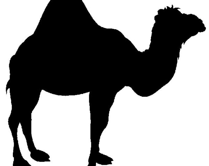 Camel Stencil Made from 4 Ply Mat Board-Choose a Size-From 5x7 to 24x36