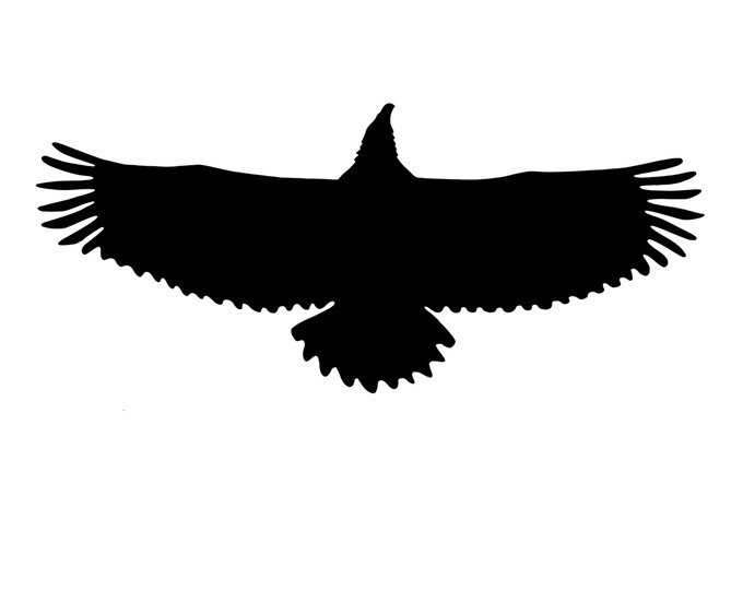 Eagle Stencil Made from 4 Ply Mat Board-Choose a Size-From 5x7 to 24x36