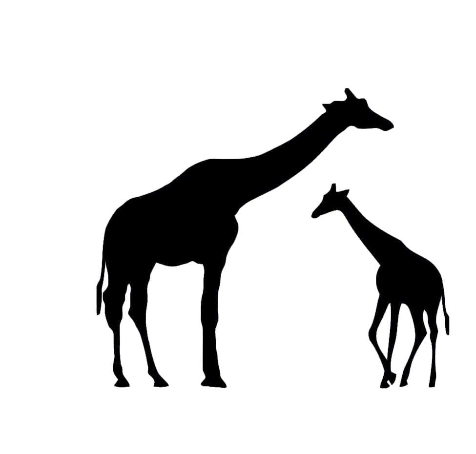 Pack of 3 Giraffe with Baby Stencils Made from 4 Ply Mat ...