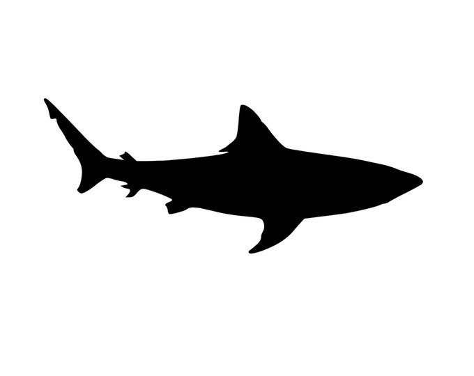 Shark Style 2 Stencil Made from 4 Ply Mat Board-Choose a Size-From 5x7 to 24x36