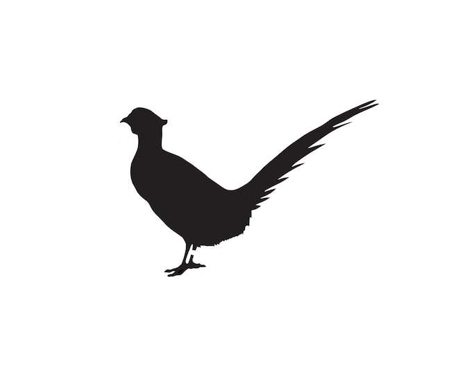 Pack of 3 Pheasant Stencils Made from 4 Ply Mat Board, 11x14, 8x10 and 5x7 -Package includes One of Each Size