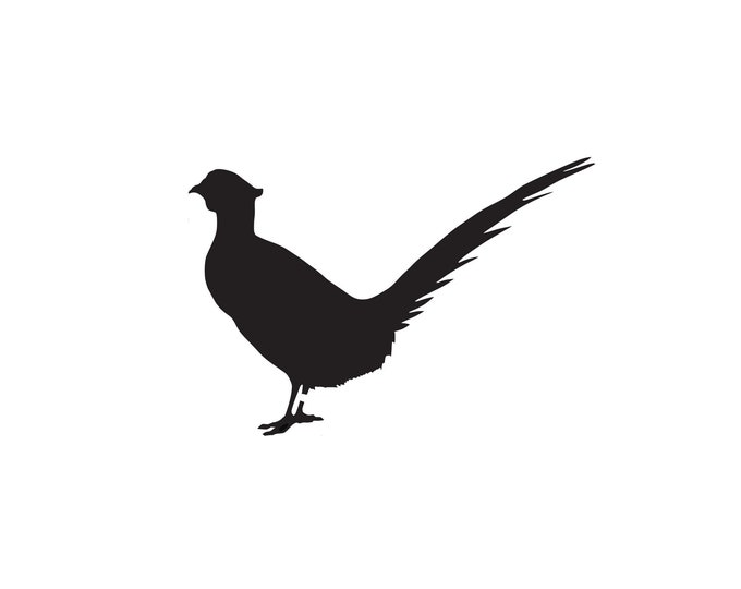 Pack of 3 Pheasant Stencils Made from 4 Ply Mat Board 16x20, 11x14, 8x10 -Package includes One of Each Size