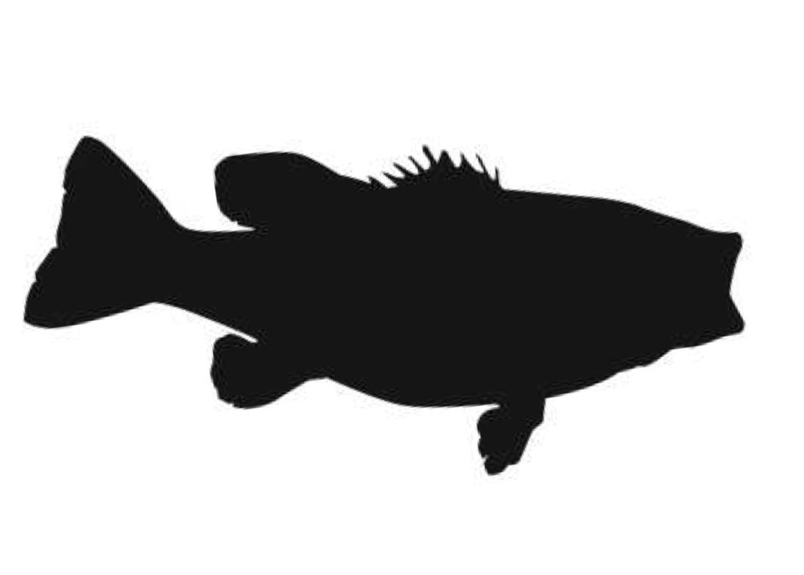 Largemouth Bass Stencil Made From 4 Ply Mat Board Choose A