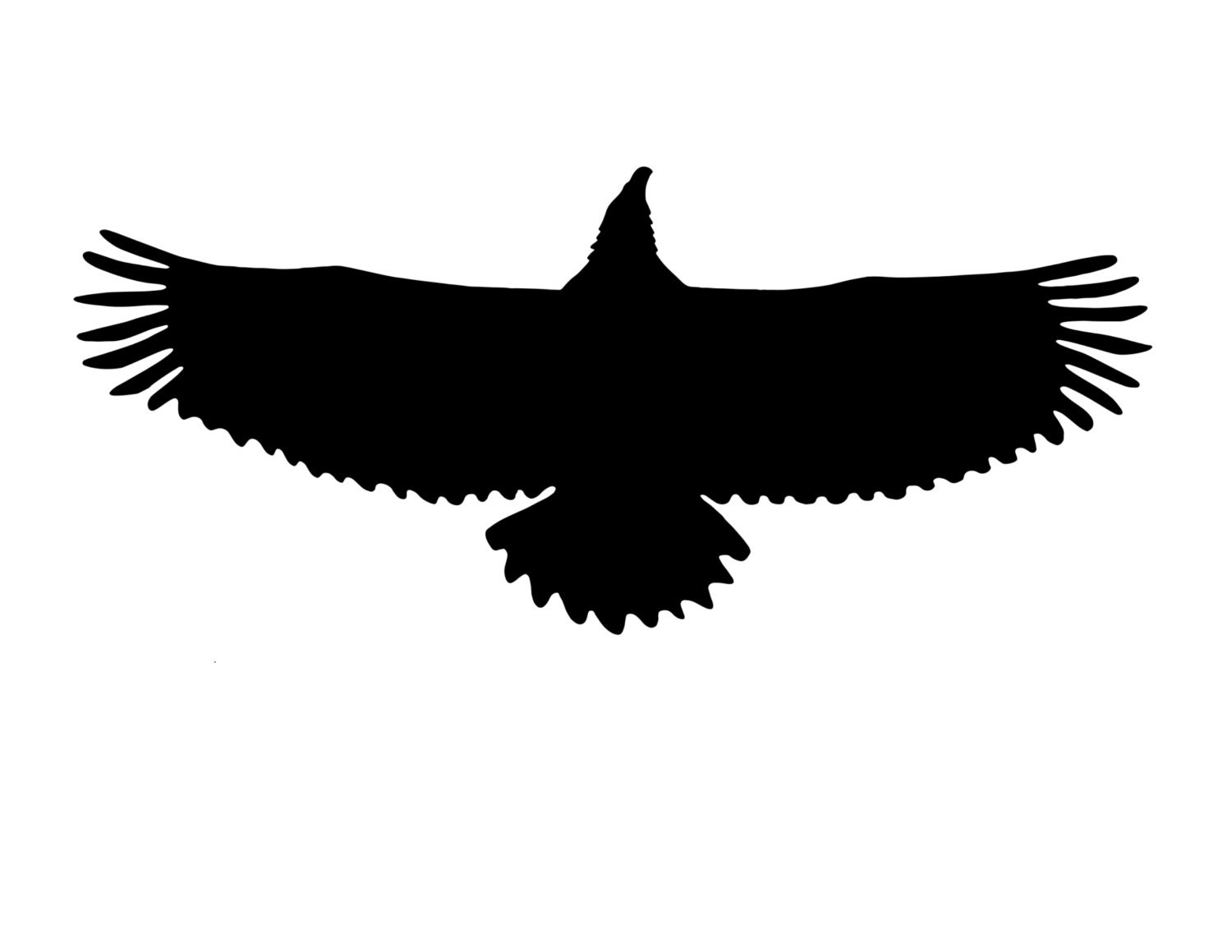 Eagle Stencil Made From 4 Ply Mat Board Choose A Size From