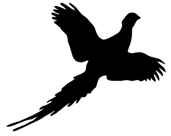 Flying Pheasant Stencil Made from 4 Ply Mat Board-Choose a Size-From 5x7 to 24x36