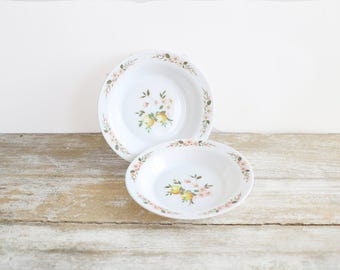 Set of two vintage Arcopal plates with apple design - Arcopal hollow plates - French vintage kitchen -  Made in France