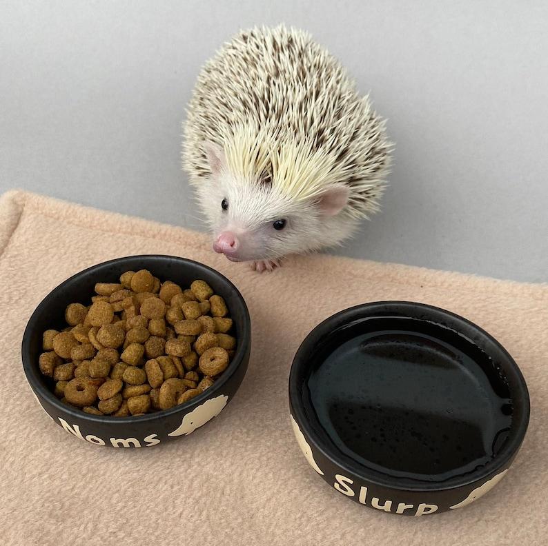 17. Ceramic Hedgehog food and water bowls - Noms and slurp bowls