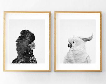 Australian Animal Print, Australian Cockatoo, Cockatoo Print,  Australian Bird Print, Australian Bird  Art, Nursery Animals, Set of 2 Prints