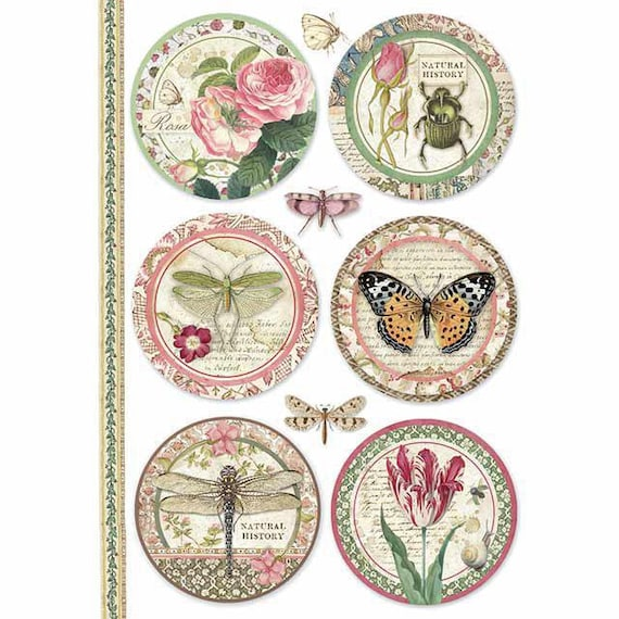 NEW Stamperia  A4 Rice Paper Provence  Cards DFSA4366