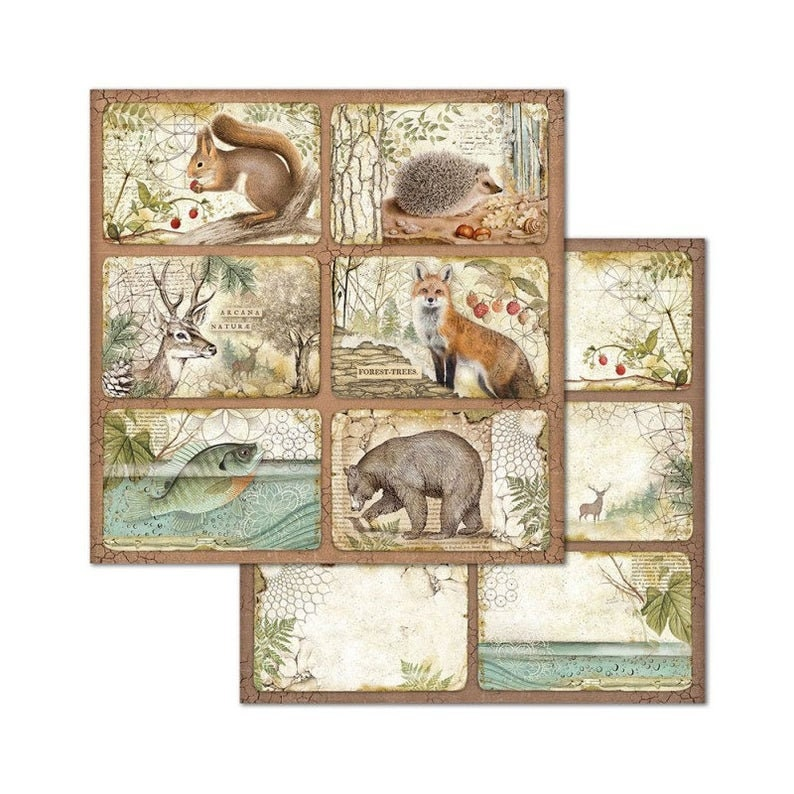 Stamperia 12x12 Forest Paper Pack  Double Sided Paper  12x12 image 8