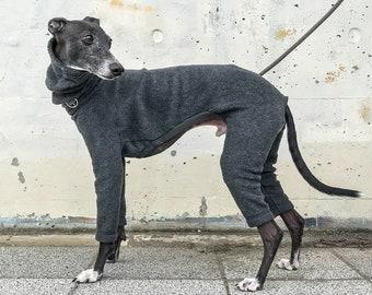 Italian greyhound clothing | Etsy