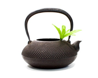 VINTAGE: Japanese Tetsubin Cast Iron Kettle - Kyusu Teapot - Black Hobnail - Small Cast Iron Teapot - Planter - SKU 22-D1-00011804