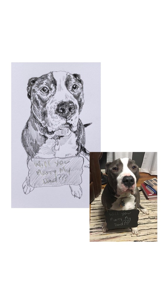 Custom Pen and Ink Dog or Cat Portrait