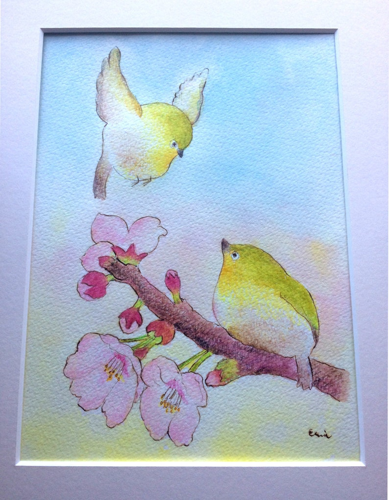 New Encounters  新しい出会いの季節  Japanese White-eye on cherry image 0
