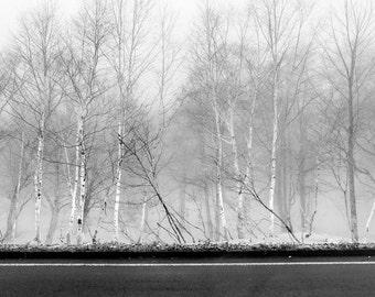Nature Photography Fine Art Photography Japan Images Black Etsy