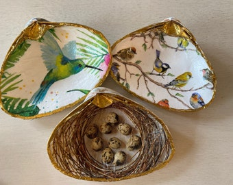 Birds and nest hummingbird Decoupaged Shells
