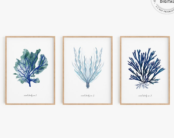 Coastal Art Print Set of 3, Ocean Coral Art Print, Printed or Downloadable, Nautical Art Series, Modern Coastal Art Triptych, Navy Blue Art