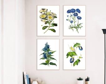 Botanical Print Set of 4 - Botanical Illustration - Botanical Art Print - Art Prints - Vintage Botanical Print Set of 4 - Botanical Poster