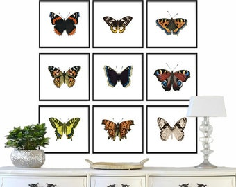 Vintage Butterfly Print Set of 9, Art Print, Giclee Canvas Print -Butterfly Wall Art Prints - Natural History Art- Multiple Sizes Available