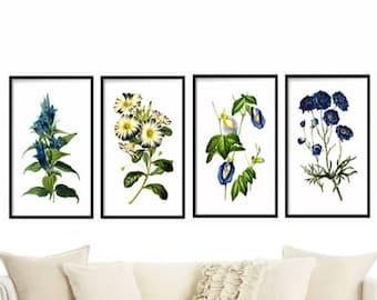 Botanical Print Set of 4 - Botanical Illustration - Botanical Art Print - Art Prints Canvas Art Multiple Size Available - Botanical Poster