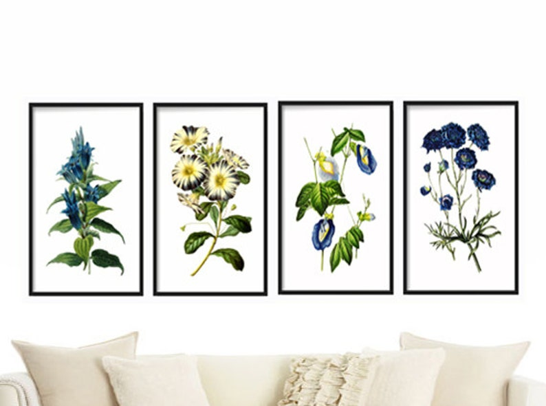 Botanical Print Set of 4  Botanical Illustration  Botanical image 0