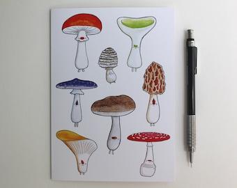 Mushroom 5x7 Greeting Card, Woodland Fungi Art Card for Any Occasion Blank Inside, Cute Colorful Nature Original Illustration