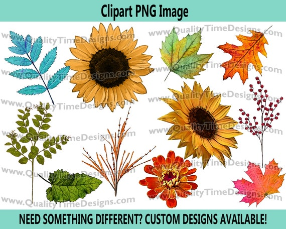 Fall Floral 101 Watercolor BOHO Turquoise Sunflower Fall Leaves Boho Water Color - by Quality Time Designs